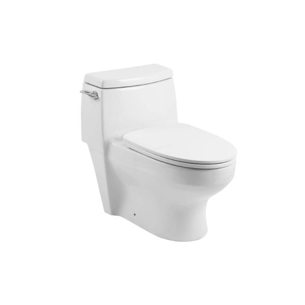 HCG C660NT AW One Piece Premium Toilet