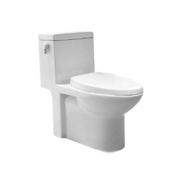 HCG Neptune C3263 AW lever type dual flush toilet
