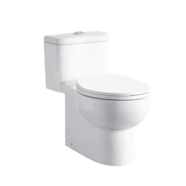 C415 AW Selene one-piece push button dual flush water closet
